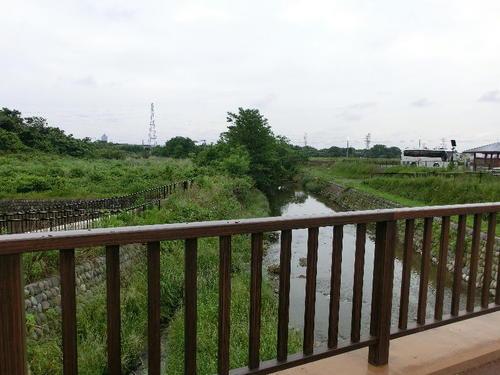 07染谷川下流側(橋の東側).JPG
