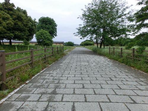 13参道がまっすぐ南大門に続く.JPG