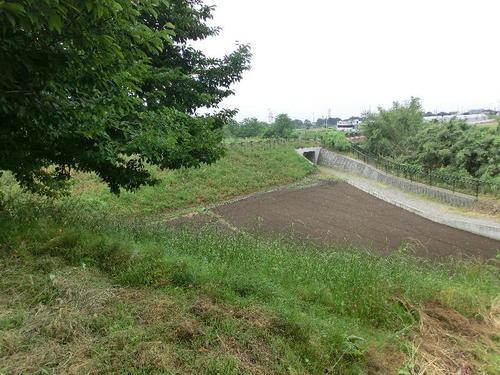 14-02施設建物のすぐ南側の崖.JPG
